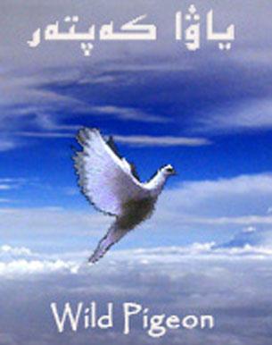 yawa kepter Kitap 305 - ياۋا كەپتەر (نۇرمۇھەممەت ياسىن ئۆركىشى)