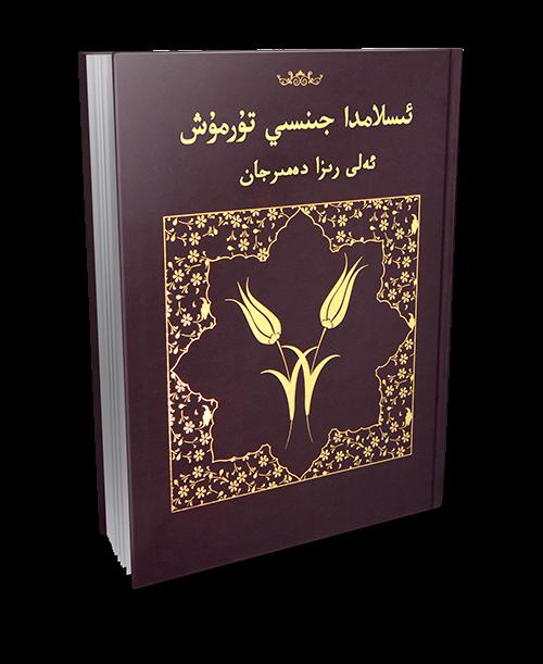 islamda jinsi turmush - ئىسلامدا جىنسىي تۇرمۇش (ئەلى رىزا دەمىرجان)