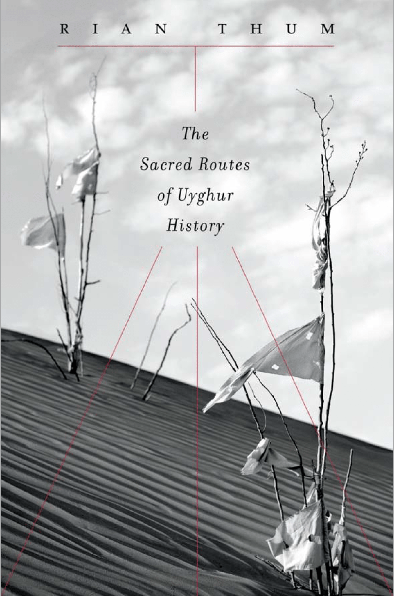 The Sacred Routes of Uyghur History, ئېلكىتاب تورى